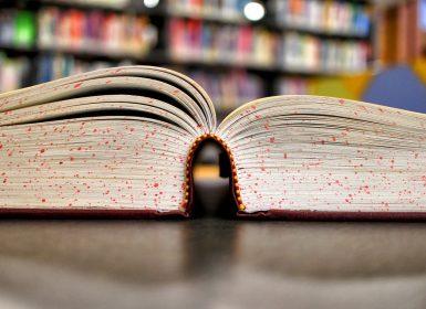 Sem Diversão para a Inteligência dosAlunos: A falta de criatividade no ensino superior